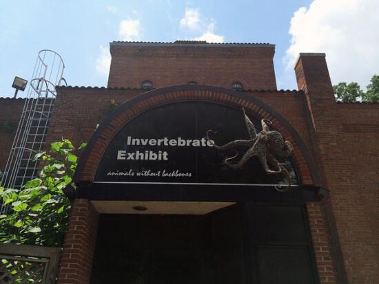 Smithsonian's National Zoo Invertebrate Exhibit